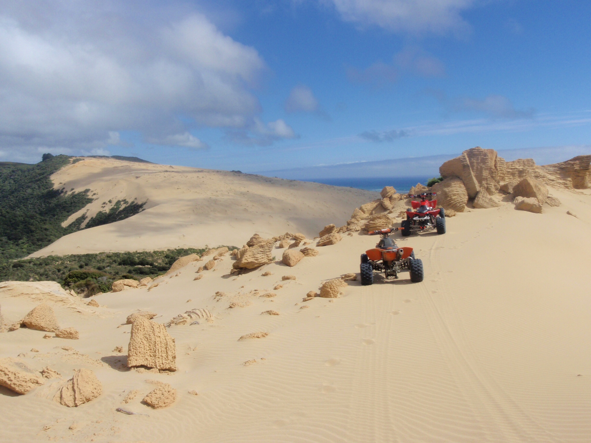 Ahipara New Zealand  city pictures gallery : Ahipara sand dunes New Zealand image